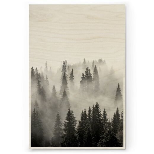 Plywood Print - Misty Forest